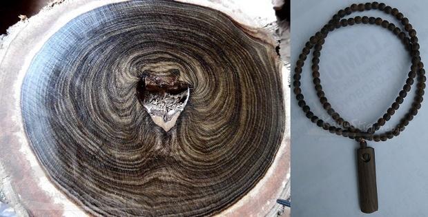 Pohon kayu kalimosodo